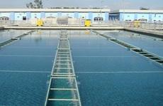 HoREA kiến nghị TP HCM chưa thu giá dịch vụ thoát nước năm 2020