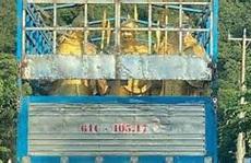 Ông chủ Đại Nam lên tiếng về nguồn gốc các tượng lính giống lính Tần Thuỷ Hoàng