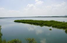Cấp bách bảo vệ nguồn nước sạch