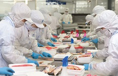 Tháng đầu tiên vào 'xa lộ EVFTA', xuất khẩu sang EU đạt 3,78 tỉ USD