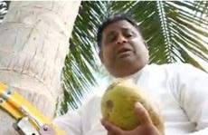 Bộ trưởng Sri Lanka leo cây dừa để... phát biểu