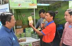Hơn 1.000 doanh nghiệp mang sản phẩm, đề án hợp tác đến TP HCM chào hàng