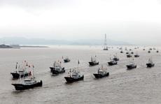 """Nhật Bản từ chối """"cành ô liu"""" của Trung Quốc ở Hoa Đông là có lý do"""