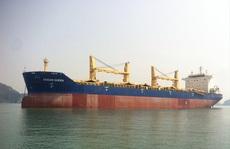 Ngân hàng rao bán tàu biển gần 200 tỉ đồng để thu hồi nợ