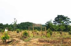 Đầu tư nông trại nghỉ dưỡng rủi nhiều hơn may