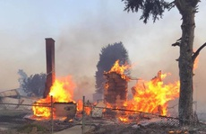 Cháy rừng lan rộng ở Mỹ