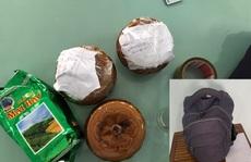 Đà Nẵng: Bên trong 2 hũ gốm bị bỏ quên tại quán ăn là các thai nhi chưa tựu hình
