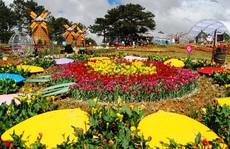 Có gì đặc sắc ở lễ hội hoa 'kỷ lục' hơn 120 triệu Euro tại Quảng Bình?