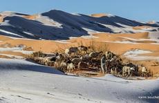 Băng giá phủ trắng sa mạc nóng nhất thế giới