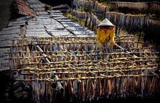 Làng chài vào mùa hội cá khô