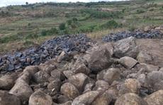 Vụ 'đá tặc' lộng hành: Xử phạt 15 triệu đồng