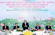 Lavifood và tham vọng đưa Việt Nam thành cường quốc chế biến rau củ quả của thế giới