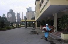 Một công nhân mắc Covid-19, Công ty Xi măng Hoàng Thạch bị phong tỏa