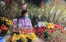 CLIP: Thị trường hoa Tết Tân Sửu 2021 ở Thủ đô đìu hiu vì dịch Covid-19