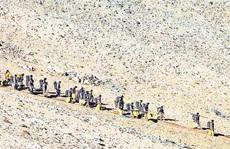 Ấn - Trung rút quân dè chừng khỏi khu vực biên giới tranh chấp