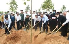 Tiếp tục phát động trồng cây 'Vì một Việt Nam xanh'