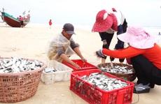CHÙM ẢNH: Chuyến 'xông biển' đầu năm của ngư dân Quảng Bình