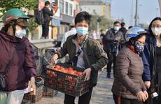 Virus SARS-CoV-2 có lây lan qua nông sản, thực phẩm, hàng hoá?