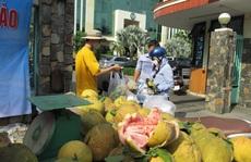 Người dân TP HCM giải cứu bưởi đào đặc sản giá 15.000 đồng/kg