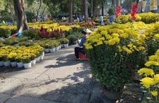 28 Tết, người bán hoa Tết ở TP HCM 'muốn khóc' sau trận mưa bất ngờ