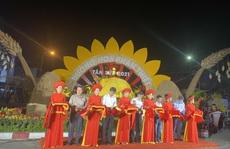 Nova Group tài trợ đường hoa tại TP HCM, Bình Thuận và Đồng Nai