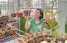 Nghệ nhân Thủy Royal: Đến với hoa lan từ những trải nghiệm trên thương trường
