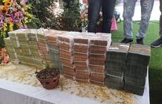 Công an, thuế vào cuộc xác minh vụ bán lan đột biến 250 tỉ đồng