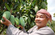 Nhiều trái cây 'độc, lạ' dội chợ