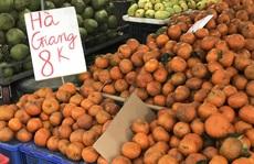 Cam sành đặc sản giá siêu rẻ 8.000 đồng/kg, tiểu thương tiết lộ sự thật