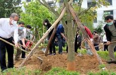 Thừa Thiên - Huế: Xây dựng môi trường 'xanh, sạch, đẹp' tại đơn vị