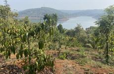 Chuyên gia bất động sản nói gì về cơn sốt đất ảo ở Bình Phước?
