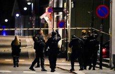 Na Uy: Rúng động vì 5 người bị bắn chết bằng cung tên