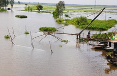 Chủ động cho mùa khô