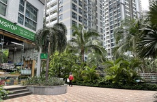 Giá căn hộ ở TP HCM vẵn tăng 10%-17% bất chấp đại dịch