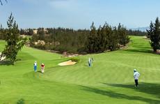 Bí thư Quảng Bình ra công văn cấm cán bộ, đảng viên chơi golf trong thời gian dịch