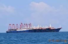 Philippines: Hàng trăm tàu Trung Quốc  'tỏa ra' ở quần đảo Trường Sa