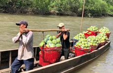 Đòn bẩy cho xuất khẩu nông sản
