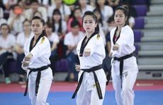 Giải Vô địch Taekwondo toàn quốc sắp diễn ra ở Quảng Nam