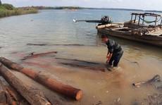 Giấu gỗ lậu dưới lòng hồ thủy điện