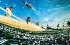Việt Nam - Nhật Bản ký công hàm dự án khoa học biển