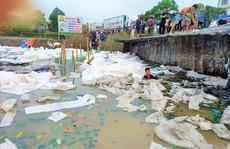 Hàng chục người dân lội bùn gom 30 tấn dưa hấu bán giúp tài xế