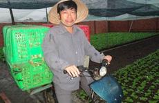 Ông Nguyễn Hoài Nam bị bắt khi nào?