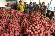Không để nông sản tại vùng dịch ùn ứ
