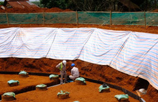 Hơn 100 lao động Trung Quốc không phép tại Đắk Nông