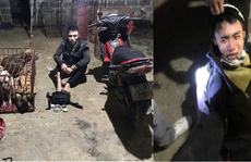Phá băng trộm chó 'khét tiếng' gây náo loạn ở Quảng Bình
