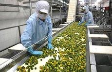 Chế biến sâu để tăng giá trị cho nông sản Việt