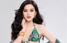 Nhan sắc 3 mỹ nhân Việt chuẩn bị 'tham chiến' Hoa hậu Thế giới