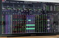 Cổ phiếu chứng khoán đồng loạt tăng giá mạnh