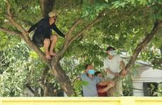 CLIP: Cổ động viên Hoà Bình leo cây xem trận khai mạc giải Hạng nhì Quốc gia 2021