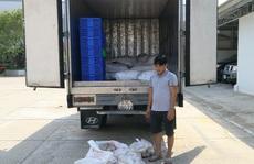 """CLIP: Chở 1.500 kg chả cá không rõ nguồn gốc, tài xế khai """"của người lạ"""""""